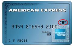 Peachtree Pilot Supply - Amex Card Data
